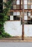 Kudzu dorośnięcie obok porzuconego budynku zdjęcia stock