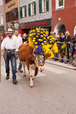 Kufstein/Αυστρία/Tirol 19 Σεπτεμβρίου: αγρότης με το διακοσμημένο γ Στοκ φωτογραφίες με δικαίωμα ελεύθερης χρήσης