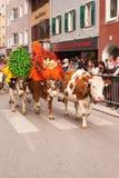 Kufstein/Austria/Tirol-19 Septiembre: Vacas adornadas en el cattl Imagenes de archivo
