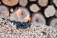 Kugel-Biomasse Stockfoto