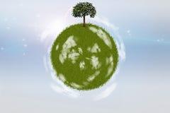 Kugel des grünen Grases mit einzelnem Baum Lizenzfreies Stockfoto