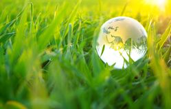 Kugel im Gras Stockfotos