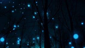 Kugelblitz in einem magischen Wald Lizenzfreie Stockfotos