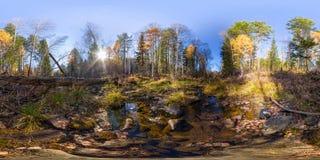 Kugelförmiges Panorama 360 Grad 180 Flussstrom im Wald und in einem gefallenen Baum vr Inhalt Lizenzfreies Stockbild