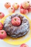 Kugelhopf äpplekaka på den gula plattan med röda äpplen omkring Royaltyfri Bild