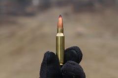 Kugeln für Gewehr Kugel im Kasten stockfotos