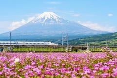 Kugelzug mit Mt fuji Stockbild