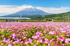Kugelzugdurchlauf Mt fuji Stockfoto