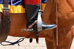 Kugghjul för hästridning Fotografering för Bildbyråer