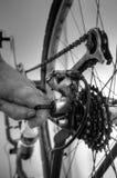Kugghjulcykel som fixar B Arkivfoto