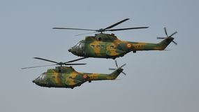 Kuguar IAR-330 Royaltyfria Bilder