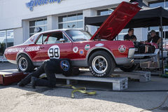Kuguara samochód wyścigowy Fotografia Royalty Free