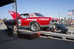 Kuguara samochód wyścigowy Zdjęcia Stock