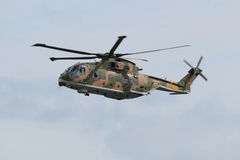 Kuguarhelikopterräddningsaktion Arkivfoto