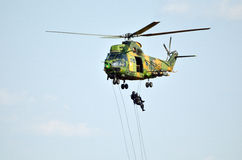 Kuguarsocathelikopter Royaltyfri Foto
