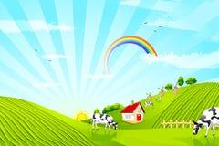 Kuh auf Bauernhof stock abbildung