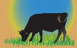 Kuh auf grünem Feld Lizenzfreies Stockbild