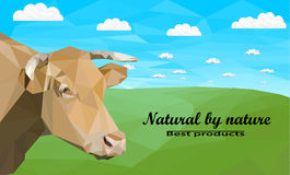 Kuh auf Wiese Lizenzfreie Stockfotografie