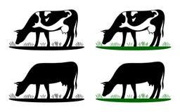 Kuh, die auf Wiese, Kuhschattenbild auf dem Gebiet weiden lässt vektor abbildung