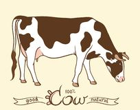 kuh Kuh, die Gras isst Kuh lokalisiert, Satz Elemente lizenzfreie abbildung