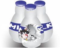 Kuh, die von der Milchflasche bricht Lizenzfreie Stockfotografie