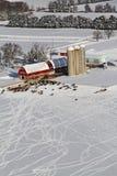 Kuh kritzelt Wisconsin-Winterbauernhofantenne Stockbilder
