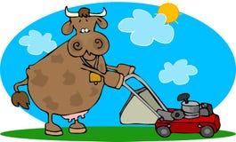 Kuh und eine Rasenmähmaschine Lizenzfreies Stockbild
