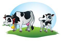 Kuh und kleine Kalbkuh Stockfotos