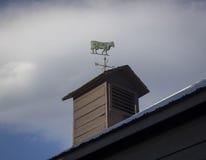 Kuh-Wetterfahne stockfotos