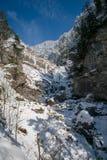 Kuhflucht in de hoogste Waterval van Farchant Royalty-vrije Stock Afbeeldingen