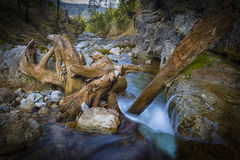 Kuhflucht vattenfall Royaltyfri Fotografi