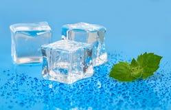 Kuiki lodu tło Fotografia Stock