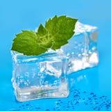 Kuiki lodu tło Obrazy Royalty Free