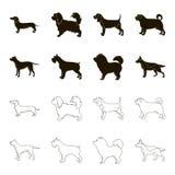 Kuilstier, Duitse herder, chow-chow, schnauzer De hondrassen geplaatst inzamelingspictogrammen in zwarte, schetsen stijl vectorsy Stock Fotografie
