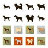 Kuilstier, Duitse herder, chow-chow, schnauzer De hondrassen plaatsen inzamelingspictogrammen in zwarte, flet voorraad van het st Stock Foto's