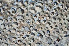 Kuiltjes gemaakte in Rotstextuur - Achtergrond Stock Fotografie