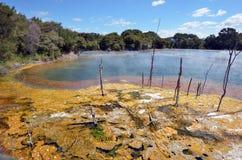 Kuirau公园在罗托路亚-新西兰 免版税库存图片