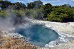 Kuirau公园在罗托路亚-新西兰 库存图片