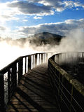 Kuirau Park, Rotorua. Wooden walkway through geothermal steam  in Kuirau Park, Rotorua, New Zealand Royalty Free Stock Images