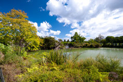 Kuirau Park, Rotorua, New Zealand Royalty Free Stock Photos