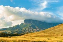 Kukenan Tepui看法在伟大的大草原的在委内瑞拉 免版税库存照片