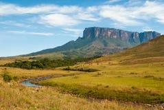 Kukenan Tepui, Gran Sabana,委内瑞拉看法  免版税库存图片