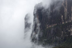 Kukenan tepui in the clouds. Mount Roraima. Venezuela, Royalty Free Stock Images