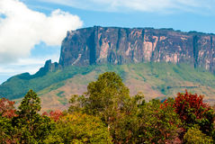 Kukenan Tepui, Gran Sabana, Venezuela. Kukenan table mountain , Great Savanna, Canaima National Park Royalty Free Stock Images