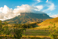 Kukenan Tepui, Gran Sabana, Venezuela. View of Kukenan Tepui, Great Savanna, Canaima National Park, Venezuela Royalty Free Stock Image