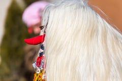 Kukeri化妆舞会节日 库存图片