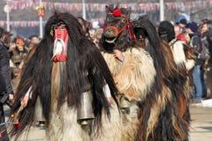 Kukeri, mummers executa rituais com os trajes e os sinos grandes, espírito maus pretendidos do susto afastado durante o festival  Imagens de Stock