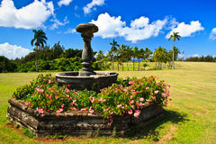 Kukuiolono Park & Golf Course, Kauai Hawaii Stock Photography
