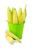 Kukurudza na cob w zielonym wiadrze Zdjęcia Royalty Free