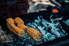 Kukurudza na grillu fotografia stock